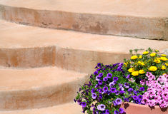 Escadas e flores coloridas fotografia de stock royalty free