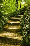 Escadas a em algum lugar Fotografia de Stock Royalty Free