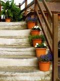 Escadas na casa do alpin com potenciômetros de flor Fotografia de Stock Royalty Free