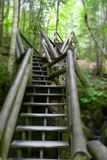 Escadas nas madeiras Fotos de Stock