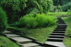 Escadas no parque Imagens de Stock