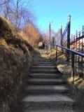 Escadas no parque que conduz à parte superior Em dias ensolarados fotografia de stock royalty free