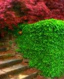 Escadas surreais Fotografia de Stock Royalty Free