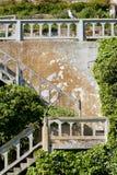 Escadas velhas do alcatraz com os arbustos verdes ingrowing Imagens de Stock Royalty Free