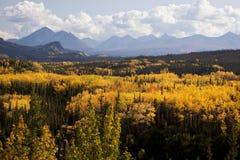 Escala de Alaska em Denali Fotos de Stock