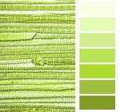 Escala de cores do papel de parede de Grasscloth Foto de Stock