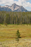 Escala de montanha do Sawtooth em Idaho Fotos de Stock