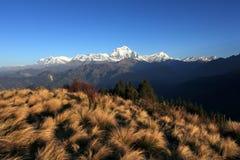 A escala de montanhas de Himalaya imagens de stock