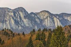 Escala de montanhas de Postavaru Fotografia de Stock