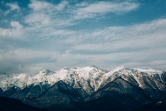 Escala de montanhas romena com floresta do pinho e névoa, tempo de inverno com neve Fotos de Stock