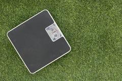 Escala de peso na grama verde Fotografia de Stock