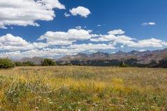 Escala de Tenmile dos prados da montanha do santuário em um dia ventoso Foto de Stock Royalty Free
