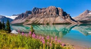 Escala de Waputik que reflete parque nacional no lago bow, Banff, Alber foto de stock royalty free