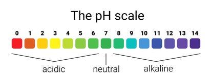 Escala del pH equilibrio infographic de la ácido-base escala para la base del ácido del análisis químico stock de ilustración