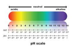 Escala del valor de pH para las soluciones ácidas y alcalinas Imagen de archivo