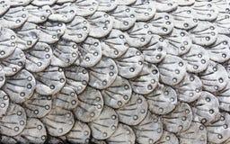 Escala do Naga, texturas fotografia de stock royalty free