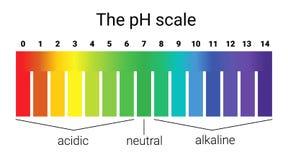 Escala do PH equilíbrio infographic da ácido-base escala para a base do ácido da análise química ilustração stock