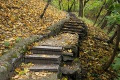 Escala en parque del otoño Imagenes de archivo