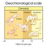 Escala Geochronological Parte 5 - eternidade Cenozoic Foto de Stock Royalty Free