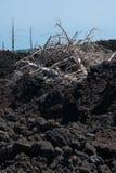 Escalada à parte superior do vulcão de Etna imagem de stock