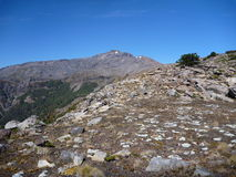 Escalada ao pico de nevada do sierrra em araucarias dos las Foto de Stock Royalty Free