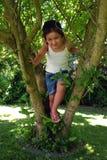 Escalada da árvore fotografia de stock royalty free