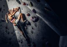 Escalada praticando vestindo do sportswear da jovem mulher em uma parede dentro foto de stock royalty free