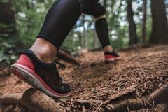 Escaladas desportivas da mulher no trajeto de floresta imagens de stock