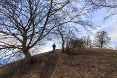 Escaladez la colline Photos libres de droits