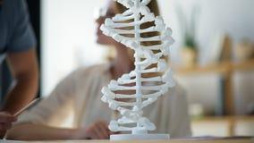 Escalado encima de mirada en modelo de la DNA estudió por los científicos almacen de video