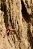 Escalador de roca del viejo hombre sin una ejecución neta en el acantilado con sus manos Rai Leh o Railay, playa de Phra Nang, Kr imagen de archivo