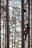Escalador del árbol para arriba en un árbol con el engranaje que sube Foto de archivo libre de regalías
