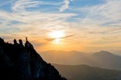 Escalador en el pico en la puesta del sol fotografía de archivo libre de regalías