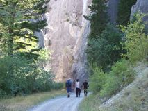 Escaladores de roca Foto de archivo
