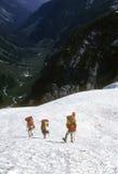 Escaladores en nieve escarpada Foto de archivo libre de regalías