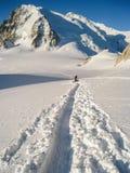 Escaladores que cruzan el glaciar del du Midi de la cuesta en la nieve fresca que hace t Imágenes de archivo libres de regalías