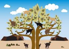 Escalando uma árvore Foto de Stock Royalty Free