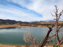 Escalante ha petrificato Forest State Park fotografie stock