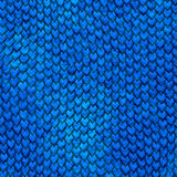 Escalas azuis do dragão de Dragonskin Fotografia de Stock Royalty Free