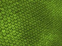 Escalas del lagarto Imagen de archivo libre de regalías