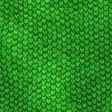Escalas do dragão verde de Dragonskin Imagens de Stock