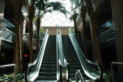 Escalators. Two adjacent escalators in unique modern bulding with surrounding palm trees Stock Photos