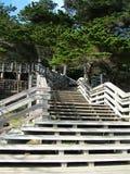 Escale a escada Fotografia de Stock Royalty Free