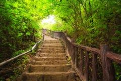 Escalera al bosque, Kanchanburi, Tailandia imagenes de archivo