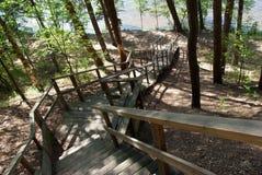Escalera al lago del bosque Imagenes de archivo
