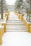 Escalera al parque del invierno Fotos de archivo libres de regalías