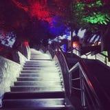 Escalera azul de Marlin Ibiza UAE Fotografía de archivo libre de regalías