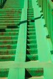 Escalera concreta verde de las escaleras con la verja Imagen de archivo libre de regalías