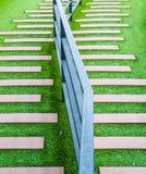 Escalera cubierta con la hierba verde fotos de archivo