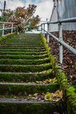 Escalera cubierta de musgo en la ciudad fotos de archivo